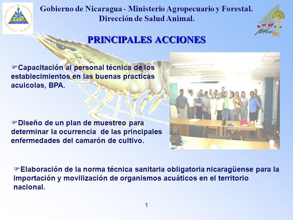 1 PRINCIPALES ACCIONES Capacitación al personal técnica de los establecimientos en las buenas practicas acuicolas, BPA. Gobierno de Nicaragua - Minist