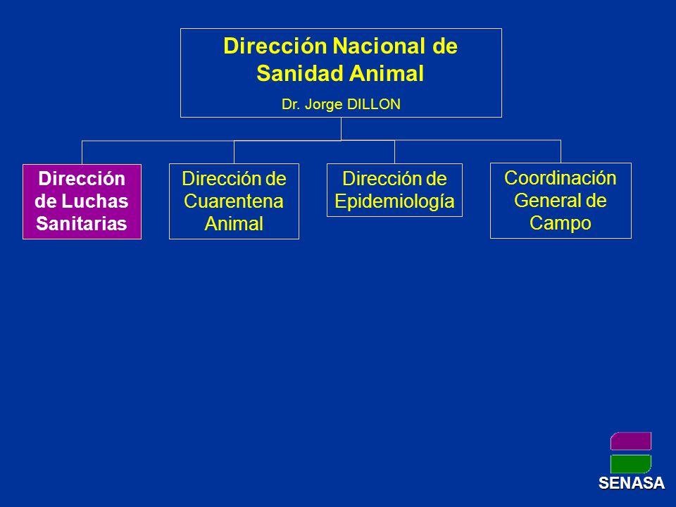 Dirección Nacional de Sanidad Animal Dr. Jorge DILLON Dirección de Luchas Sanitarias Dirección de Epidemiología Dirección de Cuarentena Animal Coordin