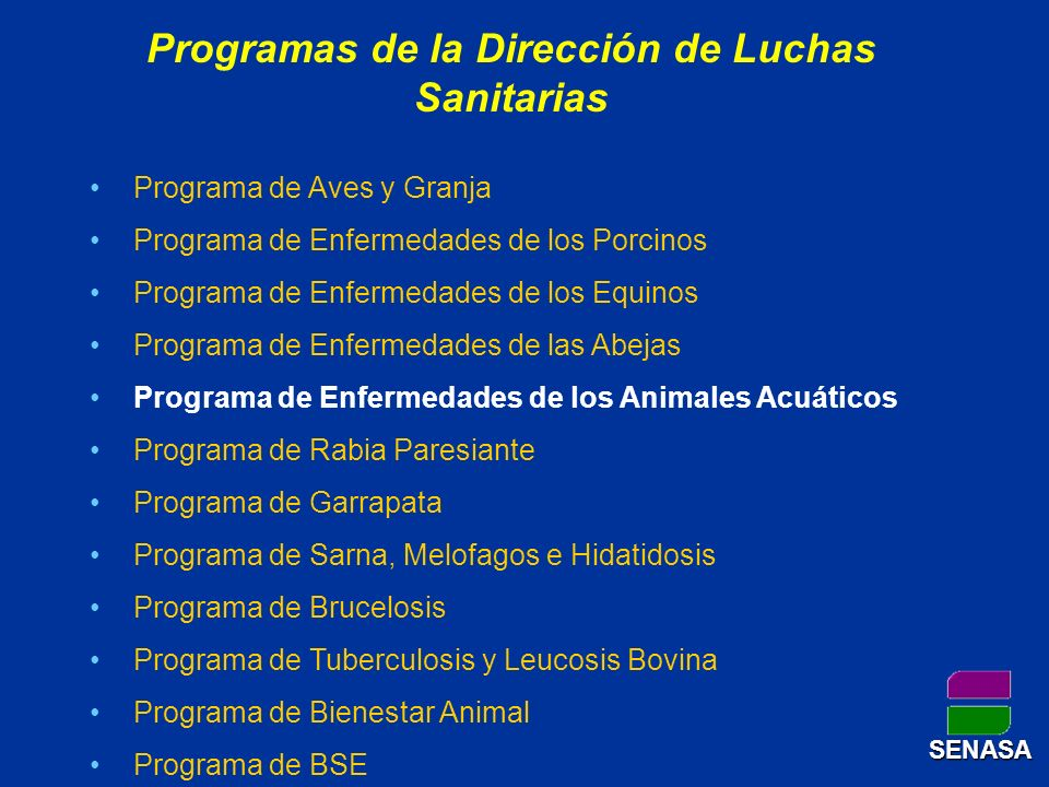 Programas de la Dirección de Luchas Sanitarias Programa de Aves y Granja Programa de Enfermedades de los Porcinos Programa de Enfermedades de los Equi