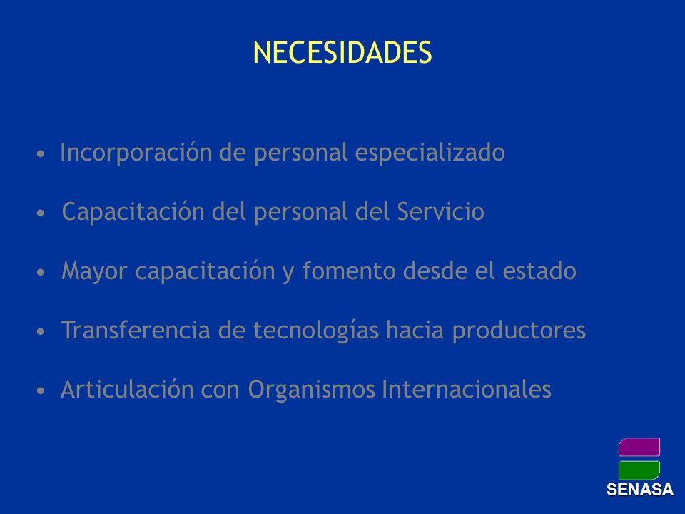 NECESIDADES Incorporación de personal especializado Capacitación del personal del Servicio Mayor capacitación y fomento desde el estado Transferencia