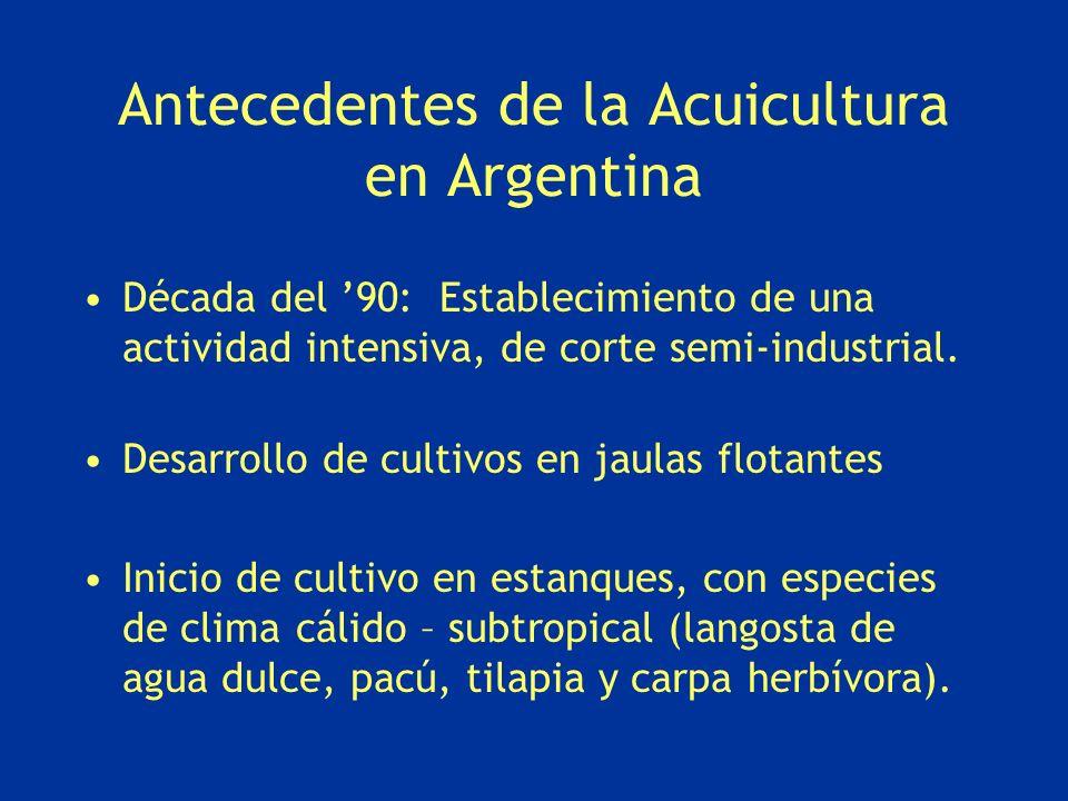 Antecedentes de la Acuicultura en Argentina Década del 90: Establecimiento de una actividad intensiva, de corte semi-industrial. Desarrollo de cultivo