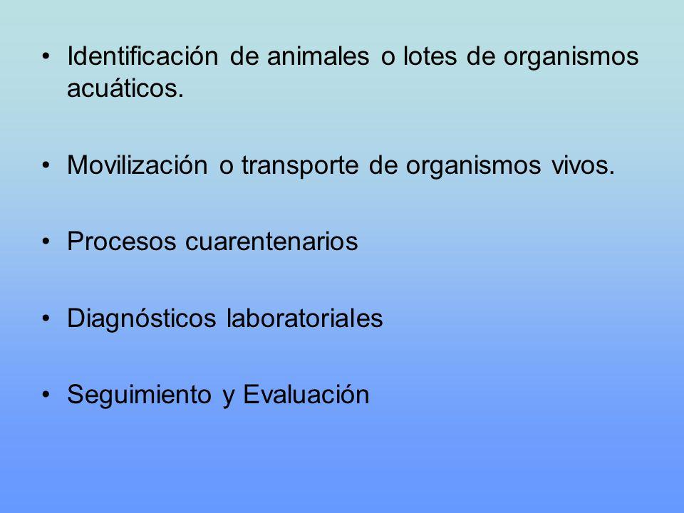 Identificación de animales o lotes de organismos acuáticos. Movilización o transporte de organismos vivos. Procesos cuarentenarios Diagnósticos labora