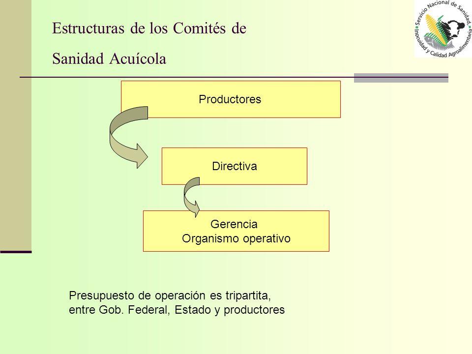 Estructuras de los Comités de Sanidad Acuícola Productores Directiva Gerencia Organismo operativo Presupuesto de operación es tripartita, entre Gob. F