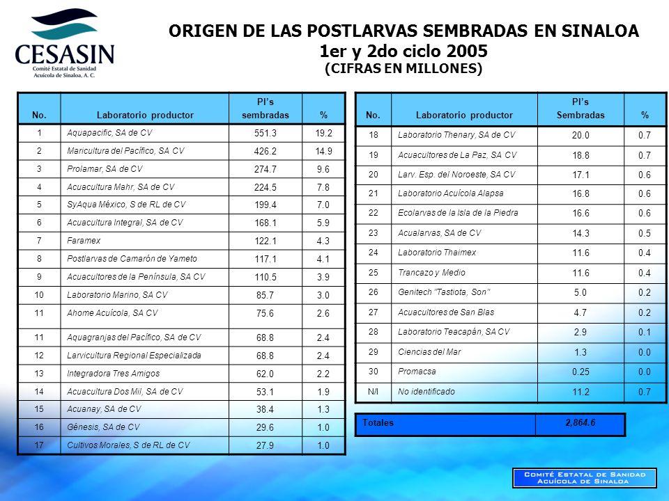 ORIGEN DE LAS POSTLARVAS SEMBRADAS EN SINALOA 1er y 2do ciclo 2005 (CIFRAS EN MILLONES) No.Laboratorio productor Pls sembradas% 1Aquapacific, SA de CV