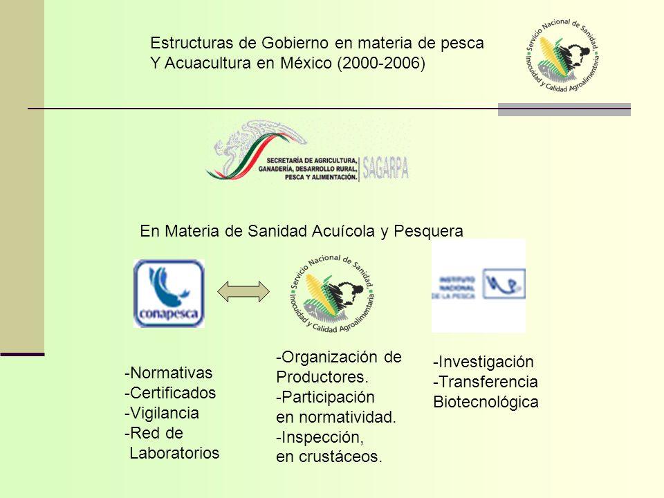Estructuras de Gobierno en materia de pesca Y Acuacultura en México (2000-2006) -Normativas -Certificados -Vigilancia -Red de Laboratorios -Organizaci
