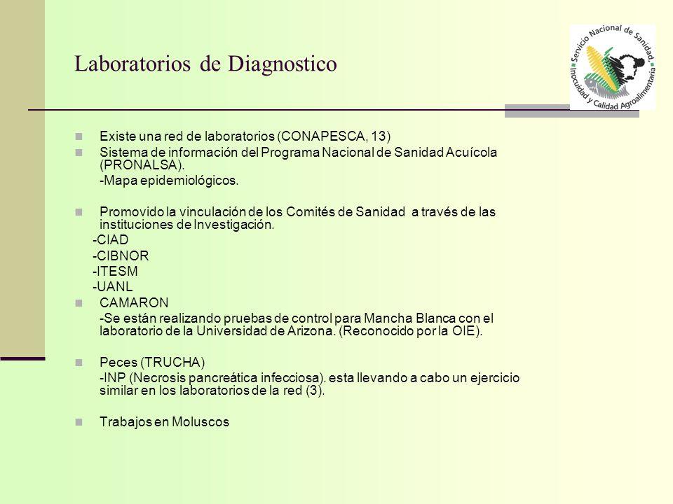 Laboratorios de Diagnostico Existe una red de laboratorios (CONAPESCA, 13) Sistema de información del Programa Nacional de Sanidad Acuícola (PRONALSA)