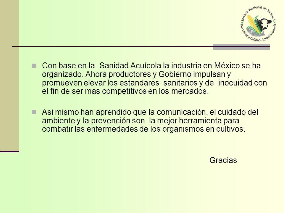 Con base en la Sanidad Acuícola la industria en México se ha organizado. Ahora productores y Gobierno impulsan y promueven elevar los estandares sanit