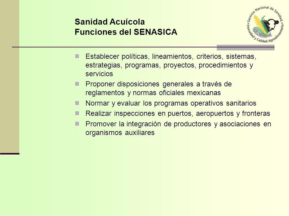 SENASICA SENASICA Responsable de la aplicación de más de 200 Normas Oficiales Mexicanas en sanidad animal y vegetal En sanidad acuícola se requiere elaborar leyes y normas que regulen la actividad Responsable de la instalación y reconocimiento de Comités Estatales de Sanidad Acuícola