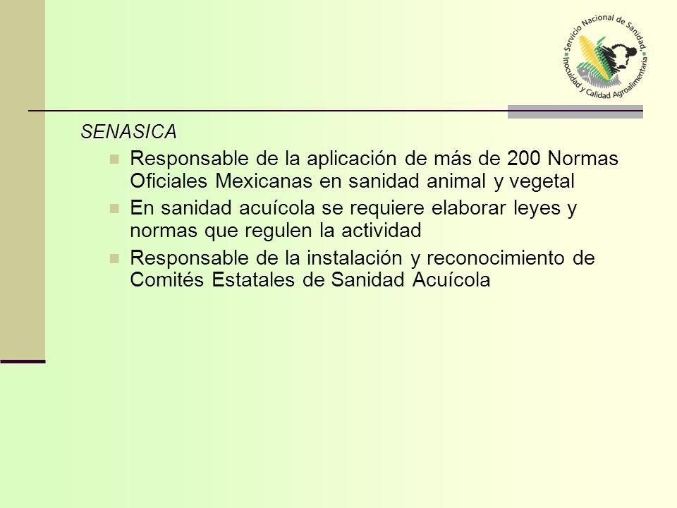 SENASICA SENASICA Responsable de la aplicación de más de 200 Normas Oficiales Mexicanas en sanidad animal y vegetal En sanidad acuícola se requiere el