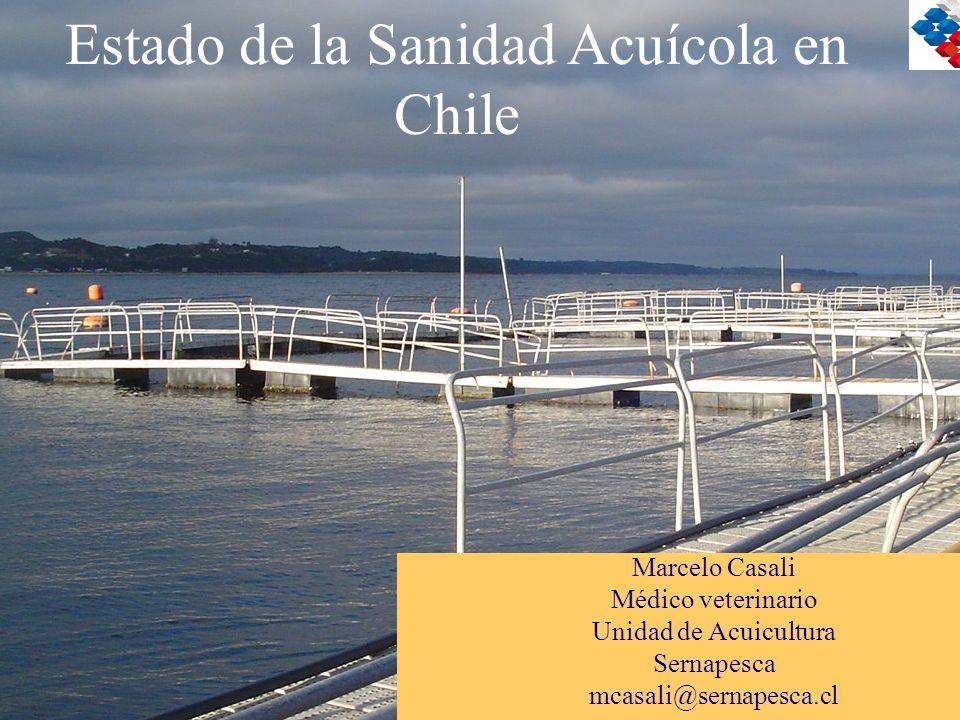 Estado de la Sanidad Acuícola en Chile Marcelo Casali Médico veterinario Unidad de Acuicultura Sernapesca mcasali@sernapesca.cl