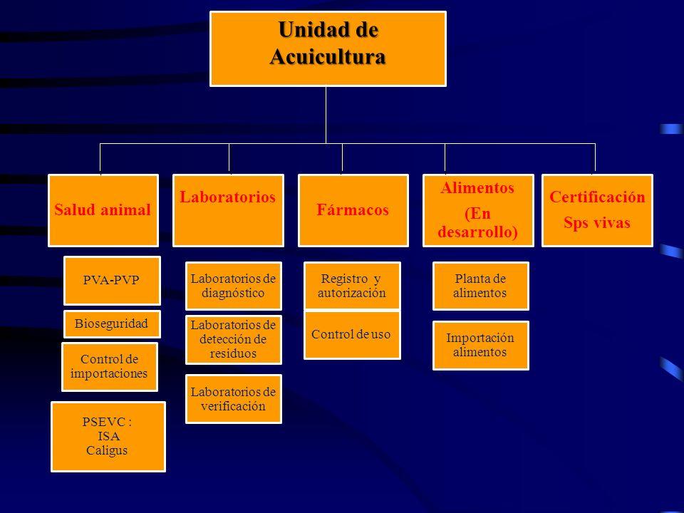 Unidad de Acuicultura Salud animal Laboratorios Fármacos Alimentos (En desarrollo) Certificación Sps vivas PVA-PVP Bioseguridad Control de importacion