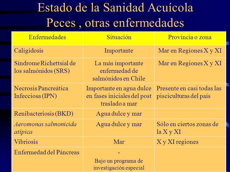 Estado de la Sanidad Acuícola Peces, otras enfermedades EnfermedadesSituaciónProvincia o zona CaligidosisImportanteMar en Regiones X y XI Síndrome Ric