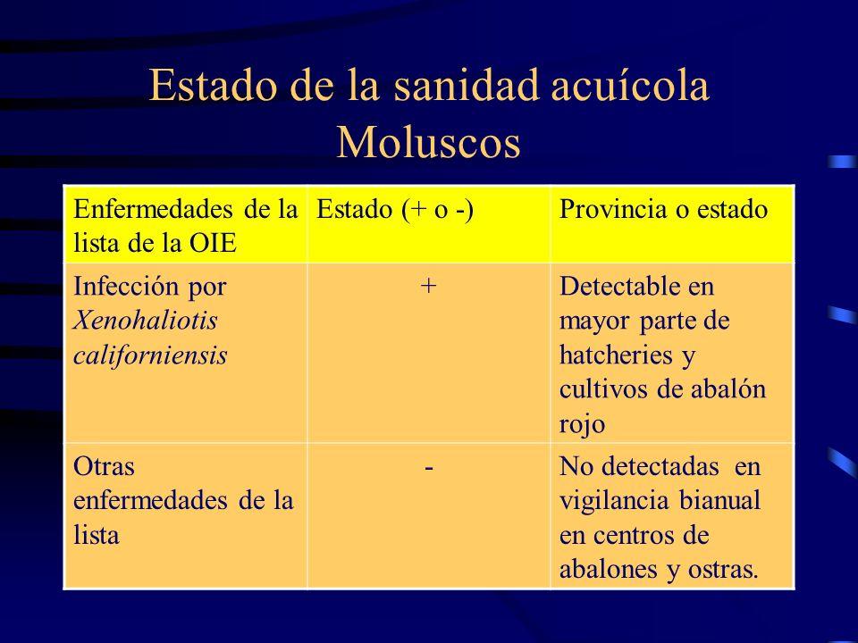 Estado de la sanidad acuícola Moluscos Enfermedades de la lista de la OIE Estado (+ o -)Provincia o estado Infección por Xenohaliotis californiensis +