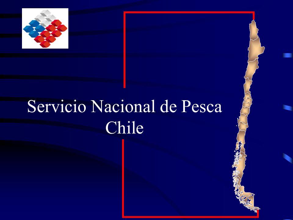 Conclusiones Chile cuenta con servicios sanitarios orientados específicamente a la acuicultura Las crisis sanitarias demuestran la necesidad de contar con programas viables, que consideren las variables sanitarias, productivas, logísticas operacionales.