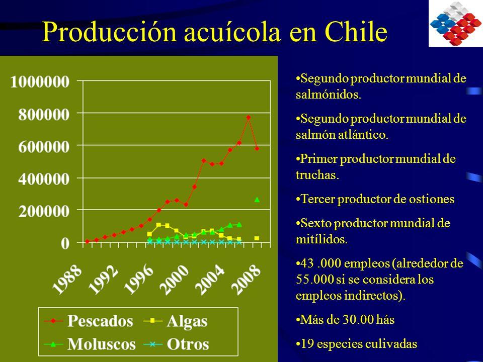 Estado de la Sanidad Acuícola Peces, otras enfermedades EnfermedadesSituaciónProvincia o zona CaligidosisImportanteMar en Regiones X y XI Síndrome Richettsial de los salmónidos (SRS) La más importante enfermedad de salmónidos en Chile Mar en Regiones X y XI Necrosis Pancreática Infecciosa (IPN) Importante en agua dulce en fases iniciales del post traslado a mar Presente en casi todas las pisciculturas del país Renibacteriosis (BKD)Agua dulce y mar Aeromonas salmonicida atípica Agua dulce y marSólo en ciertos zonas de la X y XI VibriosisMarX y XI regiones Enfermedad del Páncreas- Bajo un programa de investigación especial