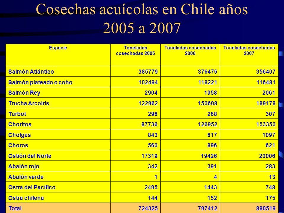Cosechas acuícolas en Chile años 2005 a 2007 EspecieToneladas cosechadas 2005 Toneladas cosechadas 2006 Toneladas cosechadas 2007 Salmón Atlántico3857