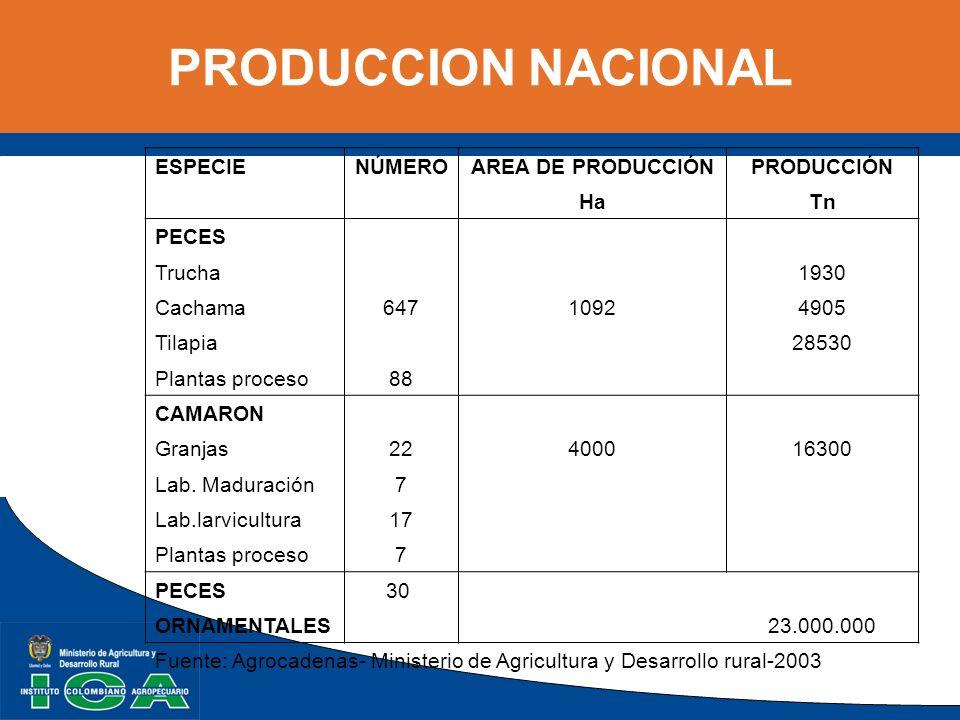 PRODUCCION NACIONAL ESPECIENÚMEROAREA DE PRODUCCIÓNPRODUCCIÓN HaTn PECES Trucha 1930 Cachama64710924905 Tilapia 28530 Plantas proceso88 CAMARON Granja