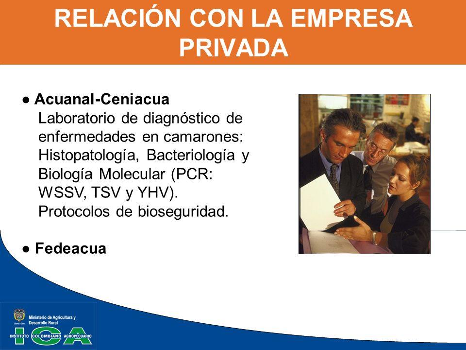 Acuanal-Ceniacua Laboratorio de diagnóstico de enfermedades en camarones: Histopatología, Bacteriología y Biología Molecular (PCR: WSSV, TSV y YHV). P