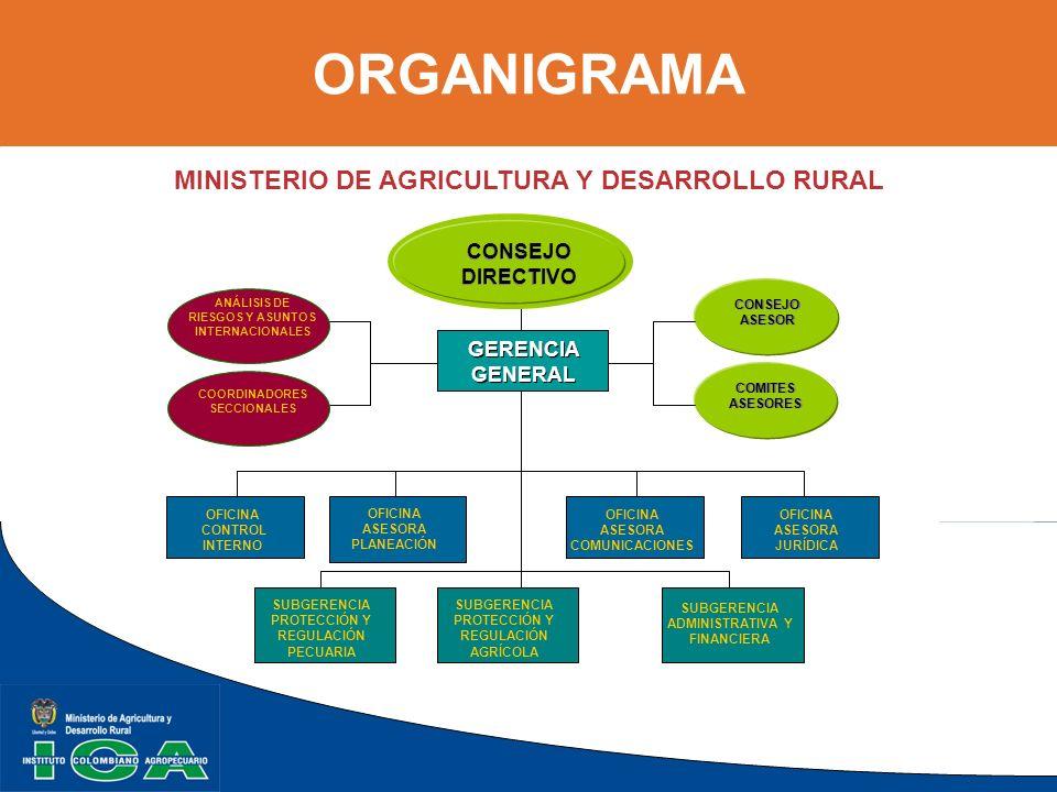 ORGANIGRAMA MINISTERIO DE AGRICULTURA Y DESARROLLO RURAL CONSEJO DIRECTIVO CONSEJO DIRECTIVO CONSEJO ASESOR ANÁLISIS DE RIESGOS Y ASUNTOS INTERNACIONA
