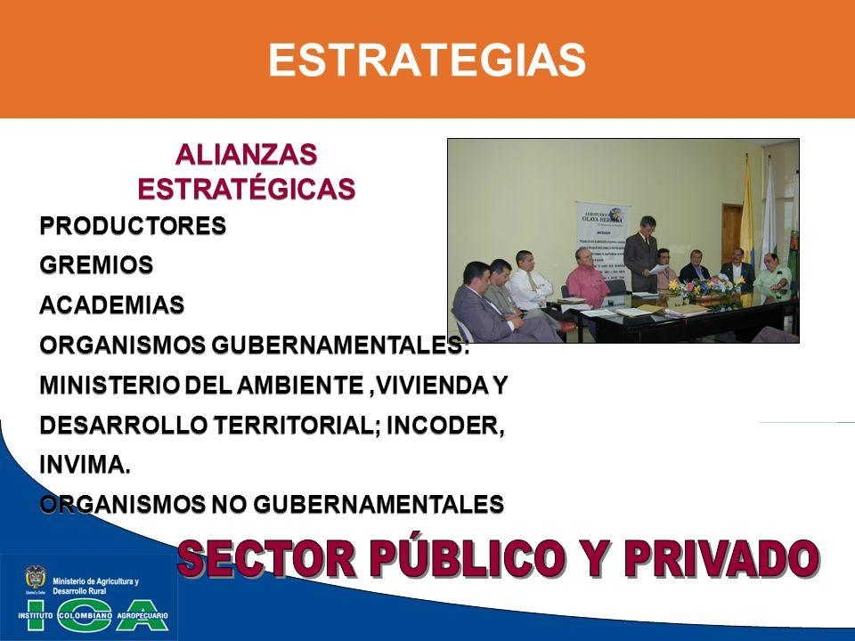 ESTRATEGIAS ALIANZAS ESTRATÉGICAS ALIANZAS ESTRATÉGICAS PRODUCTORES GREMIOS ACADEMIAS ORGANISMOS GUBERNAMENTALES: MINISTERIO DEL AMBIENTE,VIVIENDA Y D