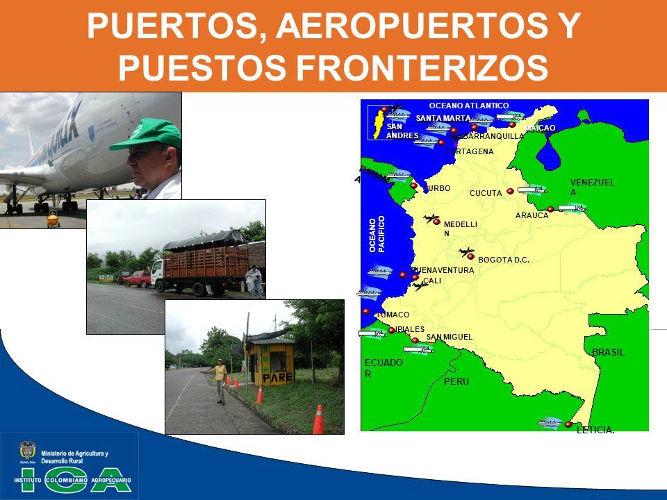 EPIDEMIOLOGÍA Montaje del Sistema de Vigilancia epidemiológica activa Monitoreo en el caribe colombiano para WSSV