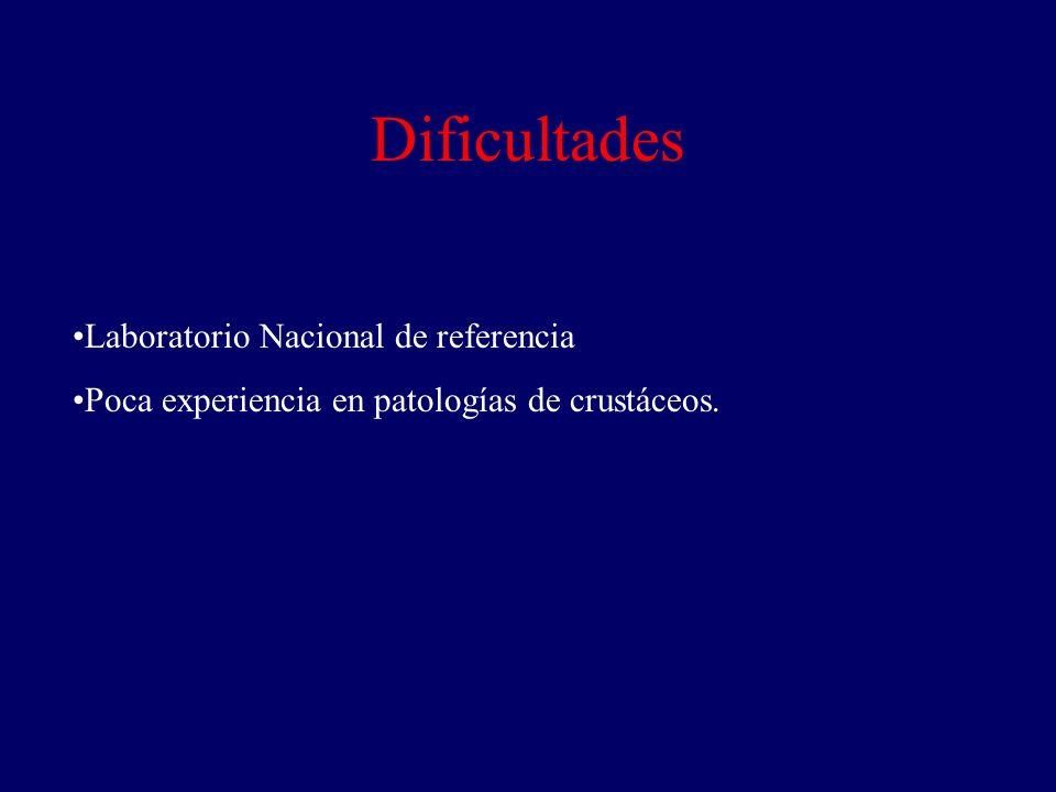 Dificultades Laboratorio Nacional de referencia Poca experiencia en patologías de crustáceos.