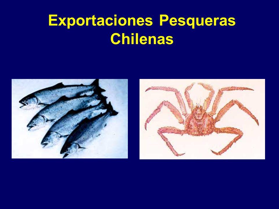 Exportaciones Pesqueras Chilenas