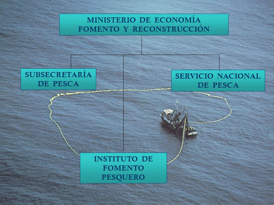 Nuestra Misión Institucional El Servicio Nacional de Pesca es la institución responsable de hacer efectiva la política pesquera establecida por las autoridades competentes, controlando el cumplimiento de la normativa pesquera, acuícola y ambiental, así como los acuerdos internacionales que regulan la actividad, con el fin de conservar los recursos hidrobiológicos y contribuir al desarrollo sustentable del sector y al crecimiento económico del país