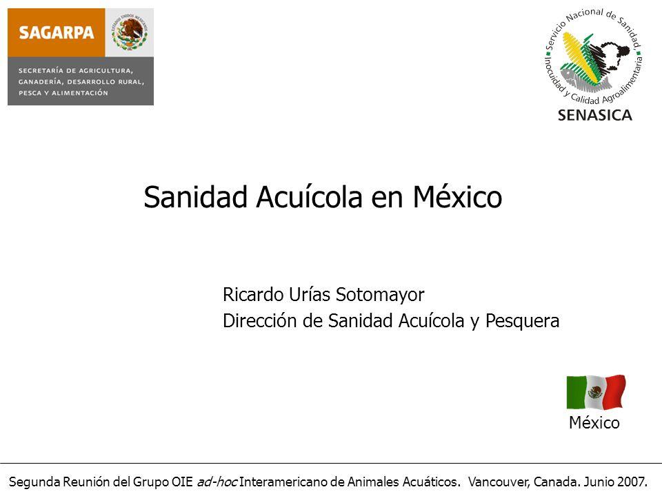 Segunda Reunión del Grupo OIE ad-hoc Interamericano de Animales Acuáticos. Vancouver, Canada. Junio 2007. Sanidad Acuícola en México México Ricardo Ur