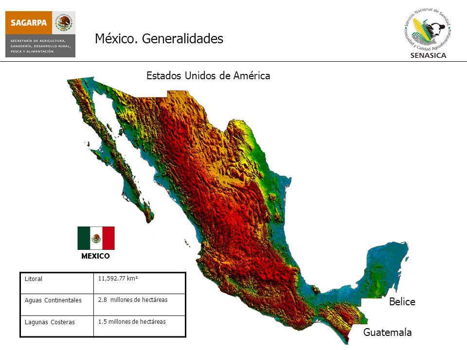 MEXICO México. Generalidades Estados Unidos de América Guatemala Belice Litoral 11,592.77 km² Aguas Continentales 2.8 millones de hectáreas Lagunas Co