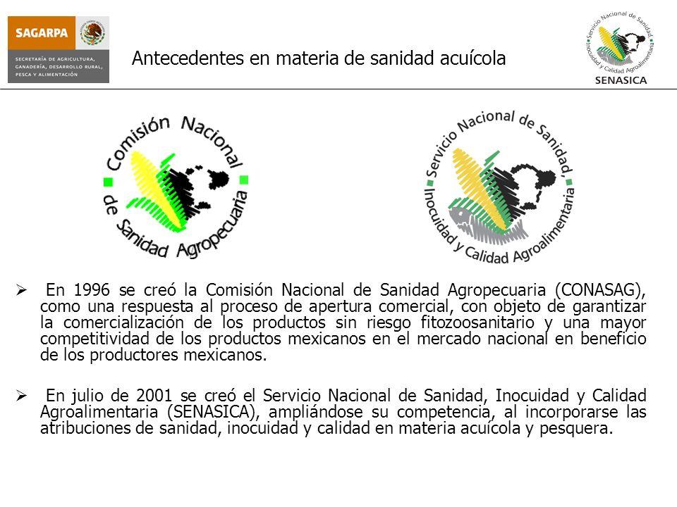 Antecedentes en materia de sanidad acuícola En 1996 se creó la Comisión Nacional de Sanidad Agropecuaria (CONASAG), como una respuesta al proceso de a