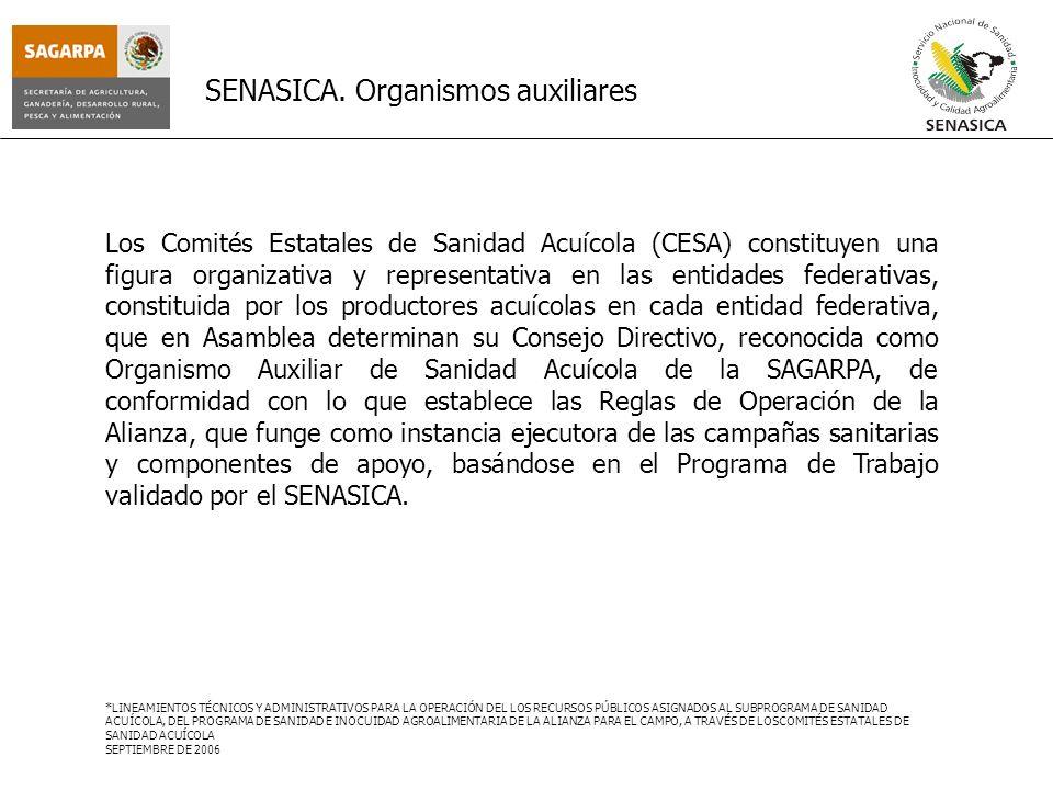 SENASICA. Organismos auxiliares Los Comités Estatales de Sanidad Acuícola (CESA) constituyen una figura organizativa y representativa en las entidades
