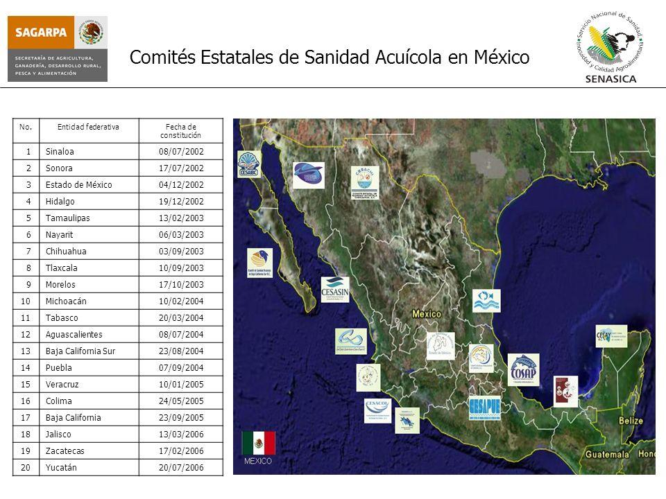 Comités Estatales de Sanidad Acuícola en México No.Entidad federativaFecha de constitución 1Sinaloa08/07/2002 2Sonora17/07/2002 3Estado de México04/12