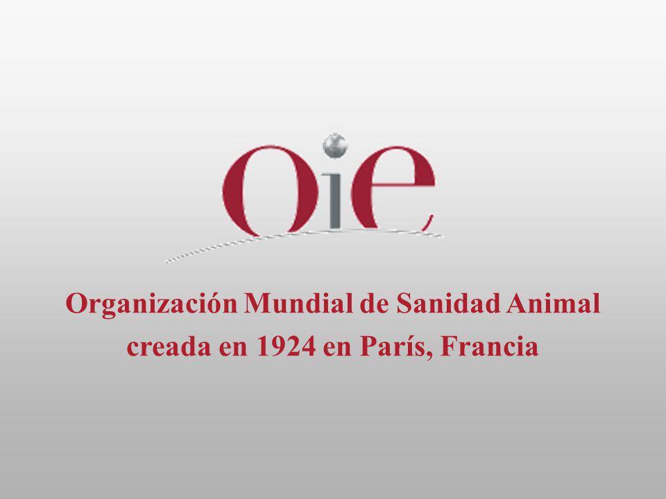 Organización Mundial de Sanidad Animal creada en 1924 en París, Francia