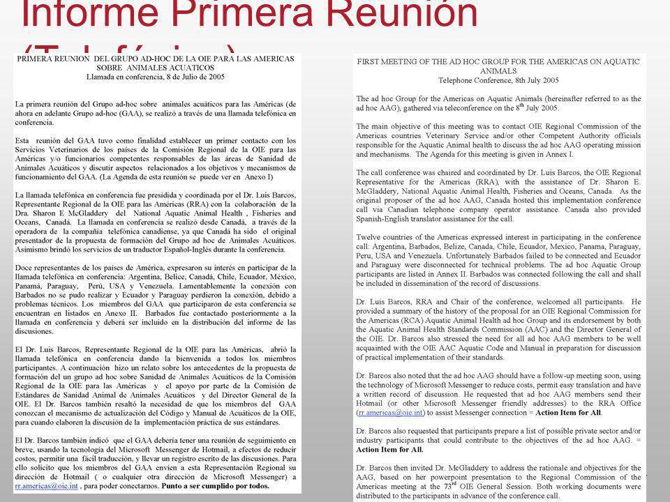 7 Informe Primera Reunión (Telefónica)