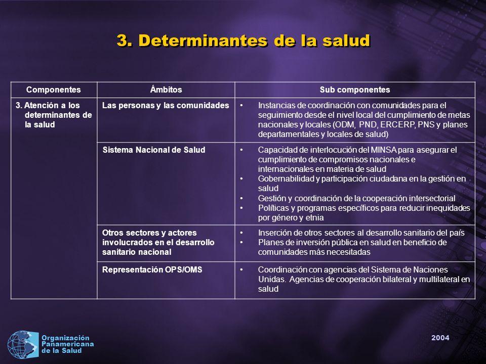 2004 Organización Panamericana de la Salud ComponentesÁmbitosSub componentes 3.