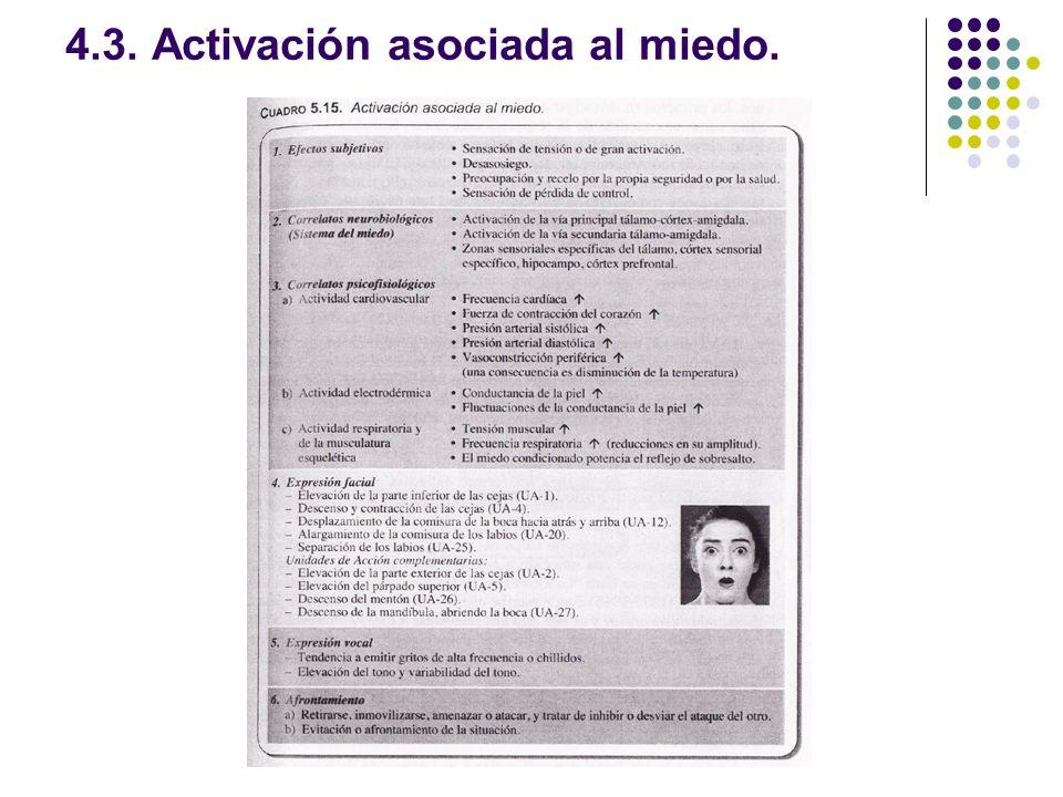 4.3. Activación asociada al miedo.
