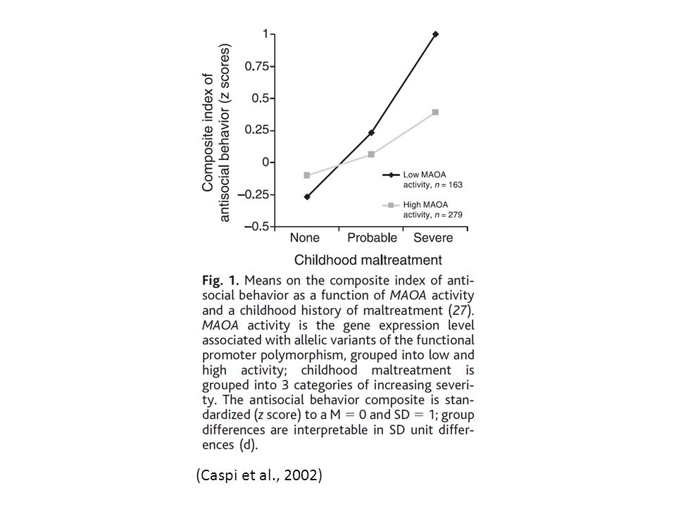 (Caspi et al., 2002)
