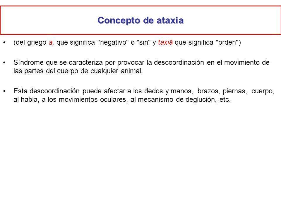 Concepto de ataxia (del griego a, que significa