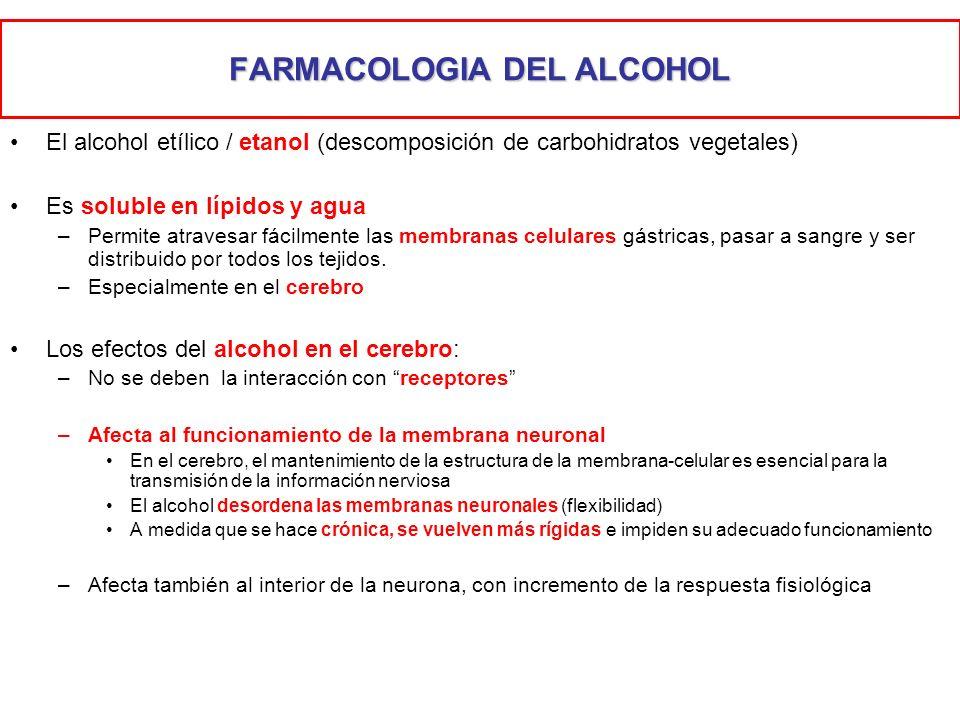 FARMACOLOGIA DEL ALCOHOL El alcohol etílico / etanol (descomposición de carbohidratos vegetales) Es soluble en lípidos y agua –Permite atravesar fácil