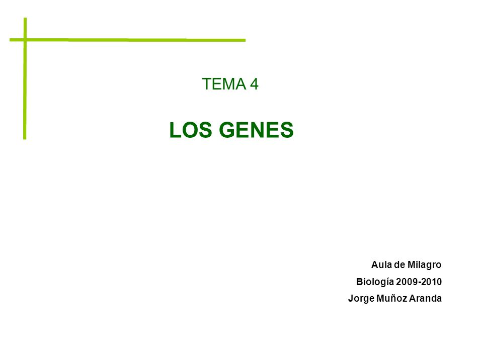 TEMA 4 LOS GENES Aula de Milagro Biología 2009-2010 Jorge Muñoz Aranda