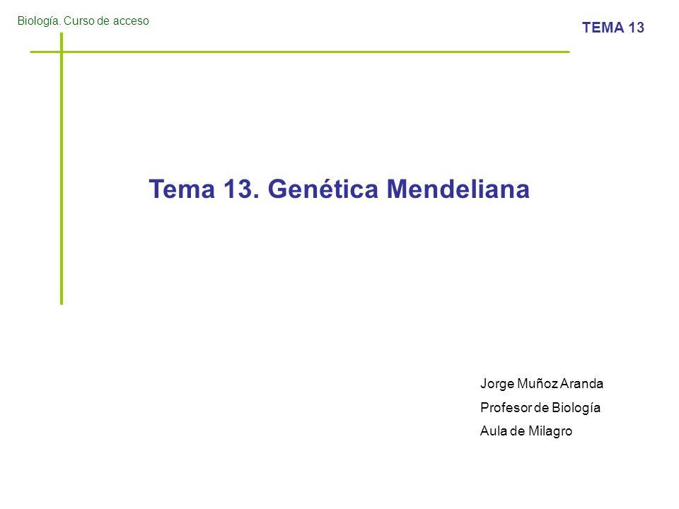 Biología. Curso de acceso TEMA 13 Tema 13. Genética Mendeliana Jorge Muñoz Aranda Profesor de Biología Aula de Milagro