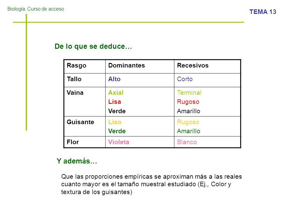 Biología. Curso de acceso TEMA 13 De lo que se deduce… RasgoDominantesRecesivos TalloAltoCorto VainaAxial Lisa Verde Terminal Rugoso Amarillo Guisante