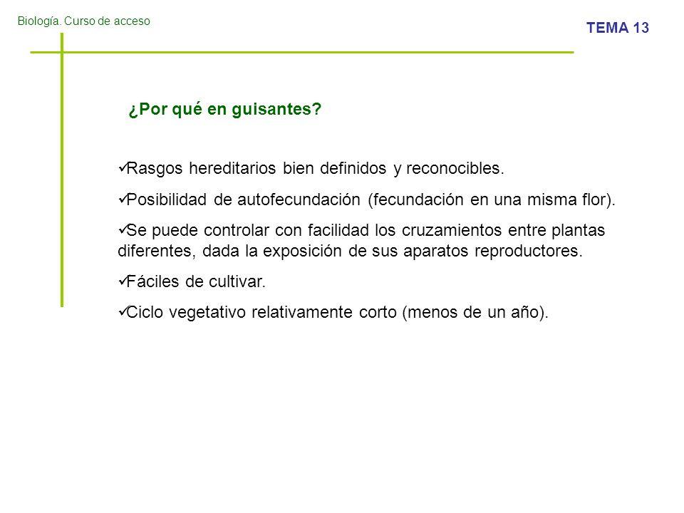 Biología. Curso de acceso TEMA 13 ¿Por qué en guisantes? Rasgos hereditarios bien definidos y reconocibles. Posibilidad de autofecundación (fecundació