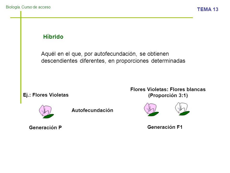 Biología. Curso de acceso TEMA 13 Híbrido Aquél en el que, por autofecundación, se obtienen descendientes diferentes, en proporciones determinadas Ej.