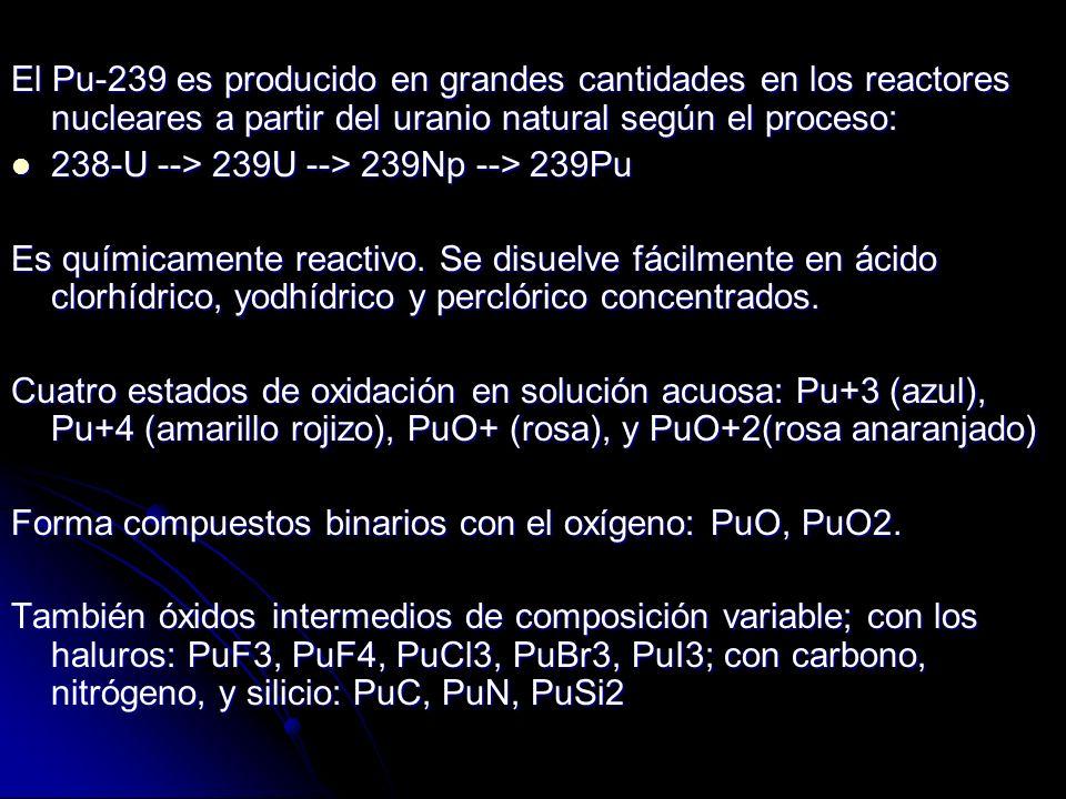 El Pu-239 es producido en grandes cantidades en los reactores nucleares a partir del uranio natural según el proceso: 238-U --> 239U --> 239Np --> 239