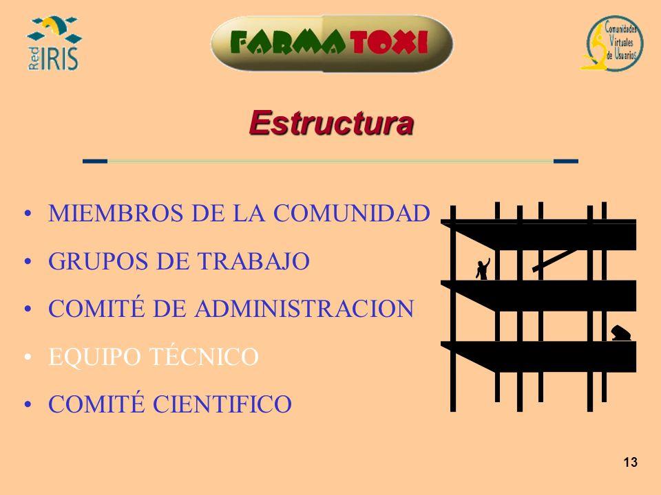 13 Estructura MIEMBROS DE LA COMUNIDAD GRUPOS DE TRABAJO COMITÉ DE ADMINISTRACION EQUIPO TÉCNICO COMITÉ CIENTIFICO