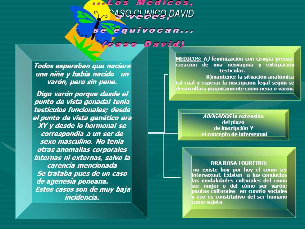 P DESTINATA RIO PODER DECISION (POLITICO, MORAL,ECONOMIC O BioEti ca Opinió n public a Teoría Multidisciplinar Derecho a La Integridad Moral (T.I.M) (¡0j0.