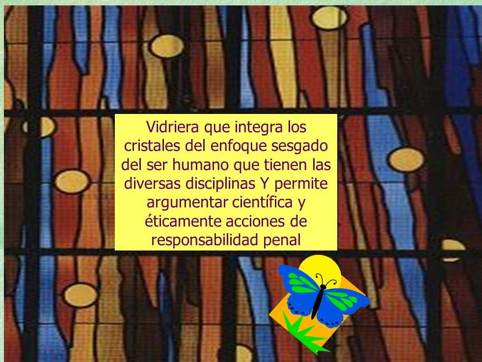 TEORIA JURIDICA T.I.M EN LA DINAMICA BIOETICA DE PROMOCION DE LA SALUD Los Derechos Fundamentales son Derechos Humanos incorporados a leyes estatales