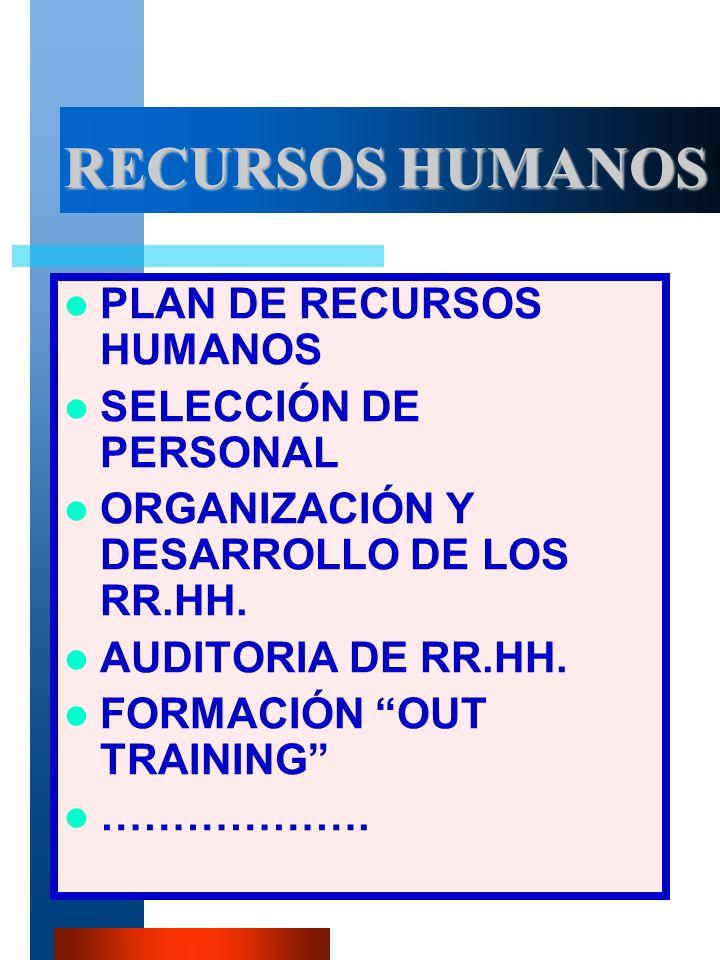 VM-PIR7 RECURSOS HUMANOS PLAN DE RECURSOS HUMANOS SELECCIÓN DE PERSONAL ORGANIZACIÓN Y DESARROLLO DE LOS RR.HH.